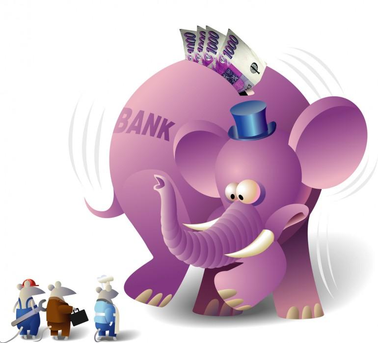 scarried elephant