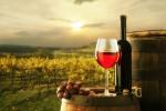 wine picture