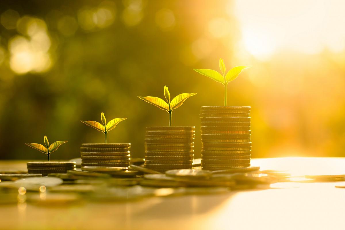 Hidden Opportunities in the Lebanese Economic Sectors