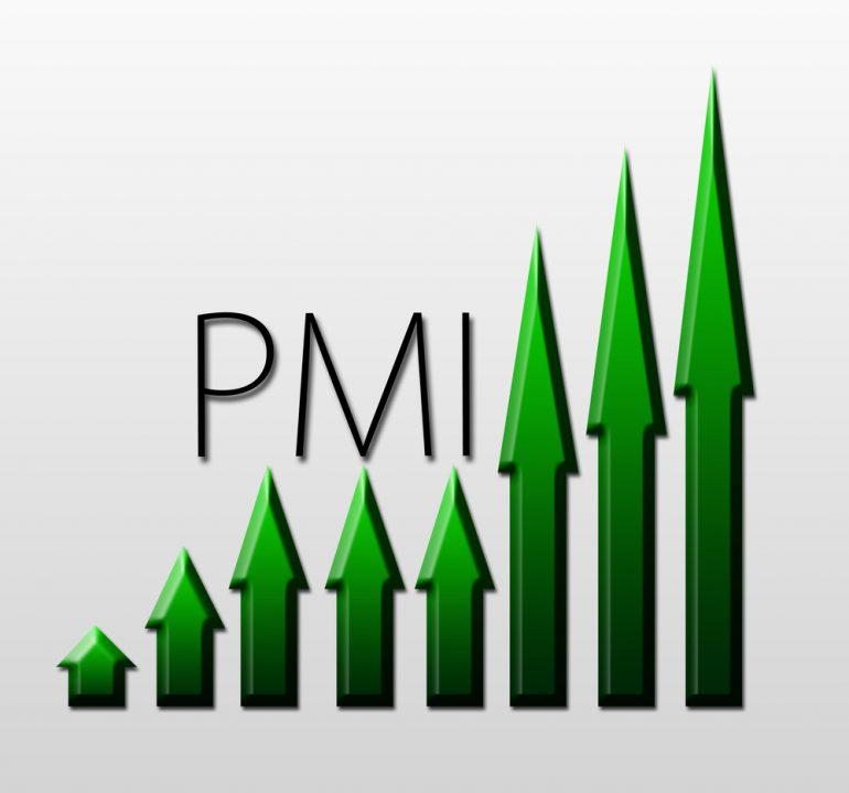 pmi-7